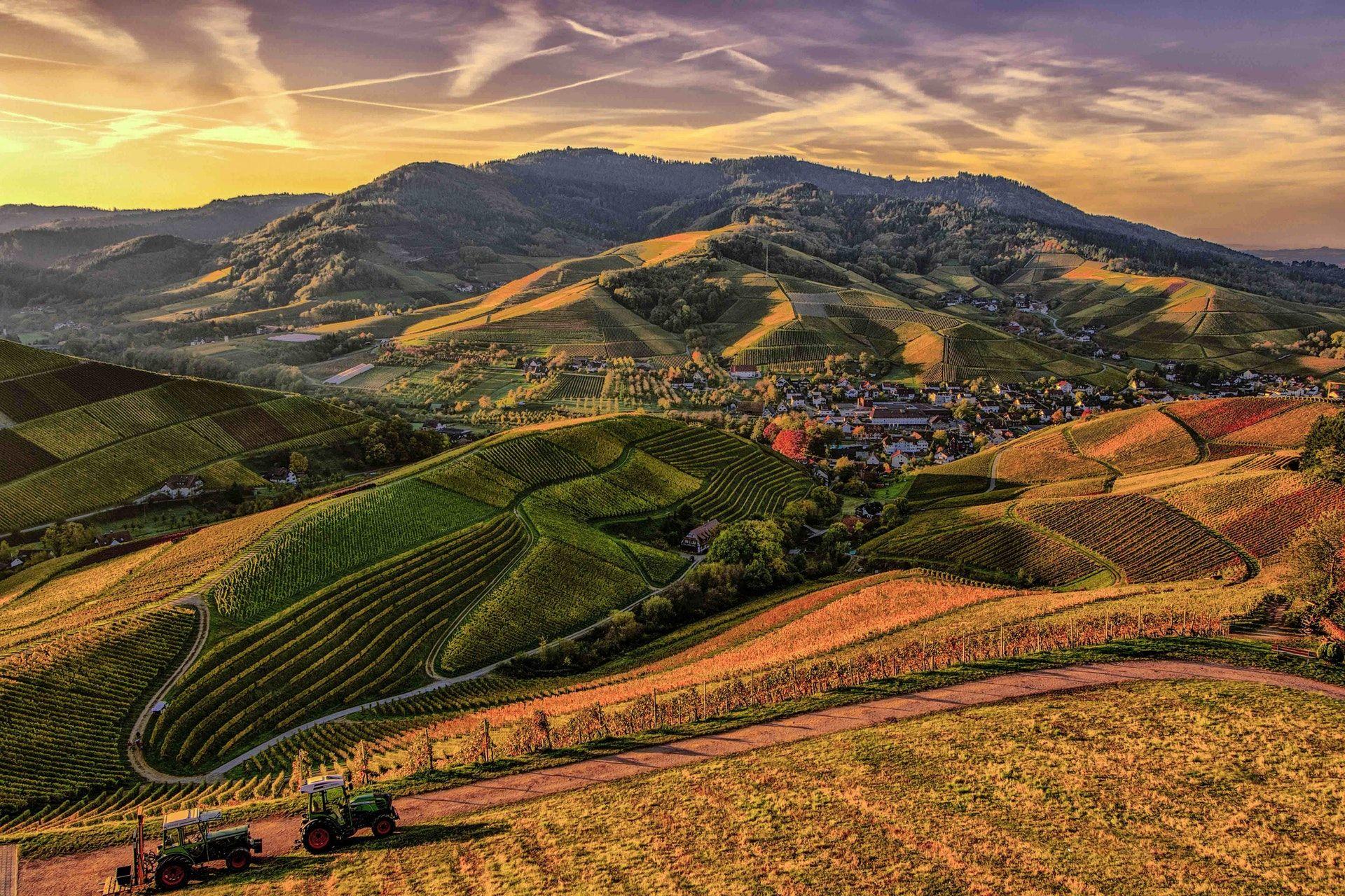 عکس زمینه کوه قهوه ای و سبز پس زمینه