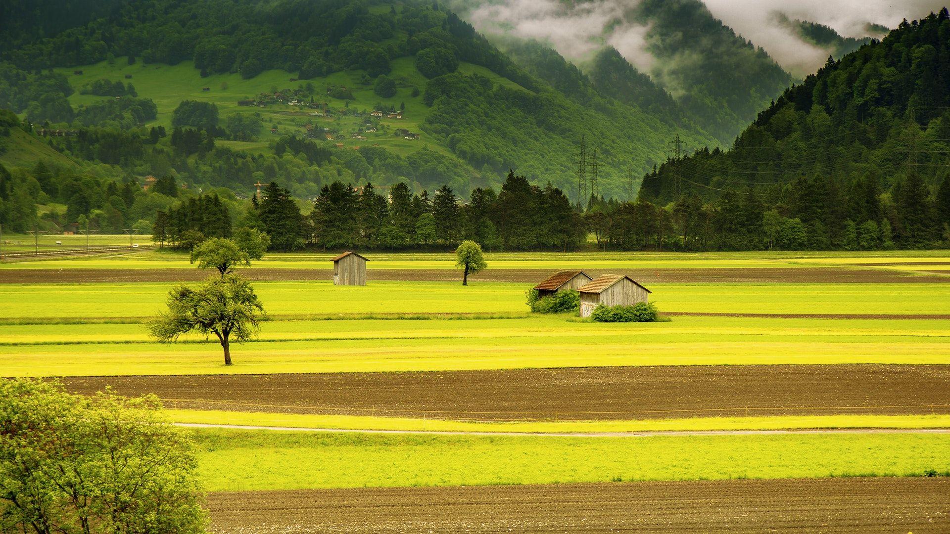 عکس زمینه خانه در وسط چمن سرسبز و کوه ها پس زمینه