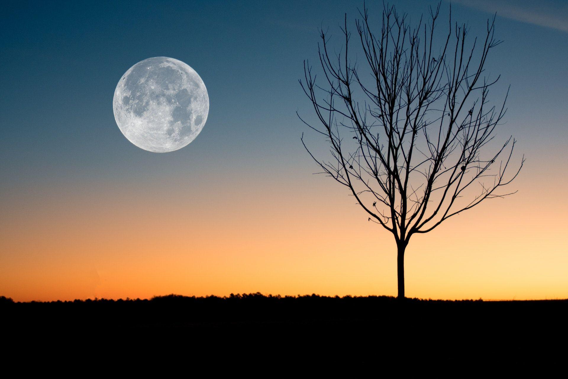 عکس زمینه ماه کامل در غروب آفتاب پس زمینه