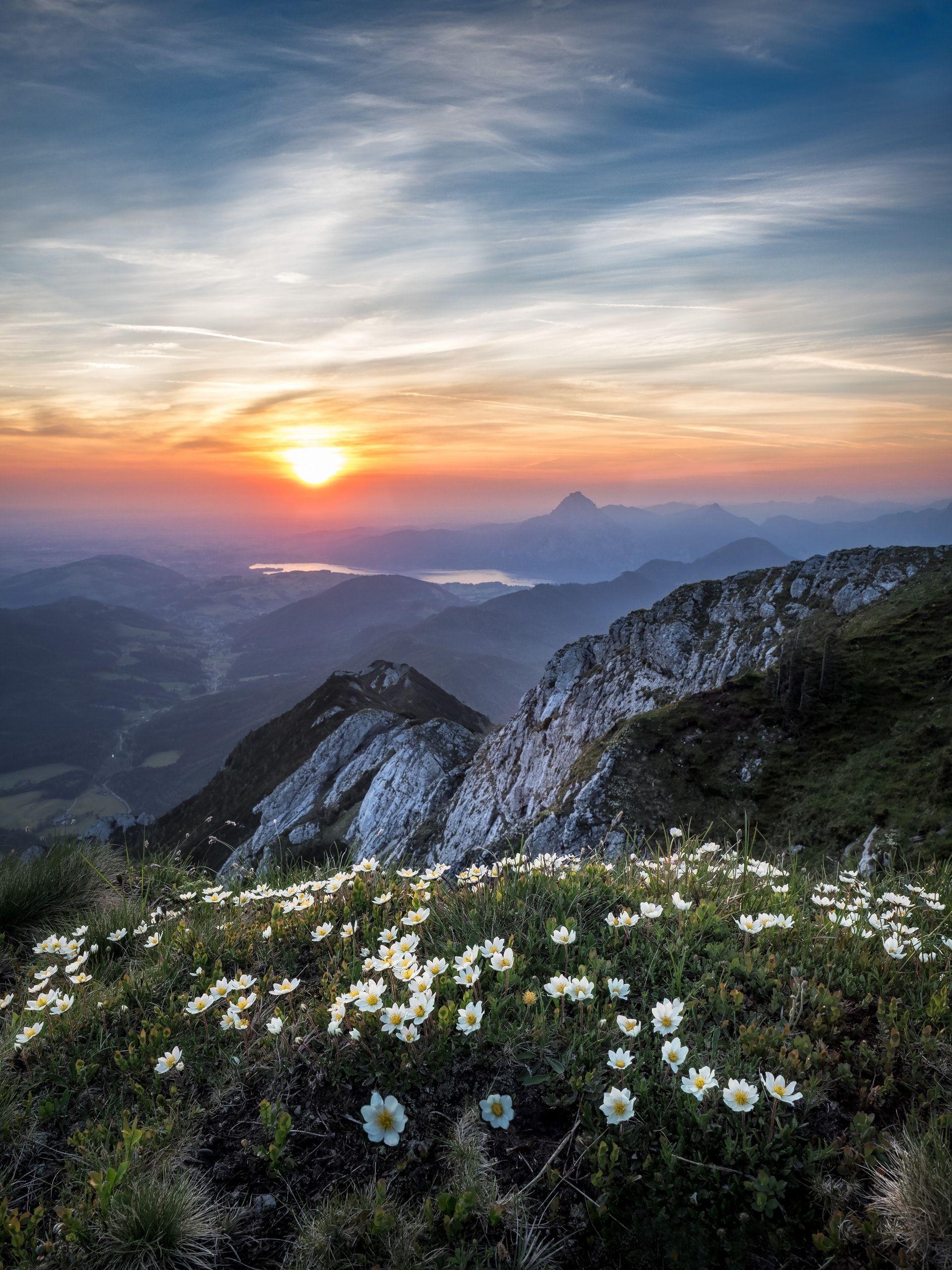 عکس زمینه کوه در سحر پس زمینه