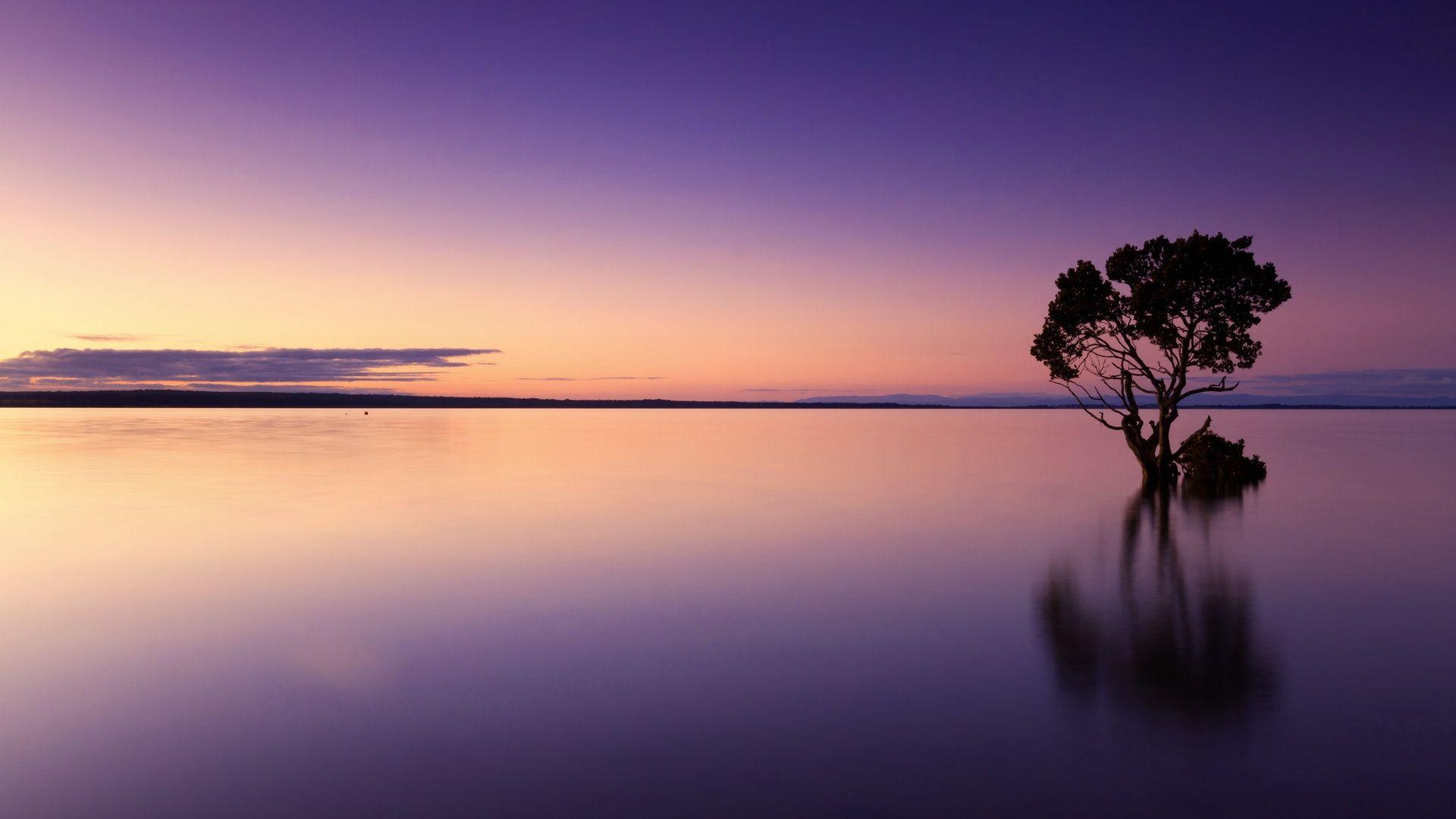عکس زمینه منظره زیبای دریا در برابر آسمان در غروب آفتاب پس زمینه