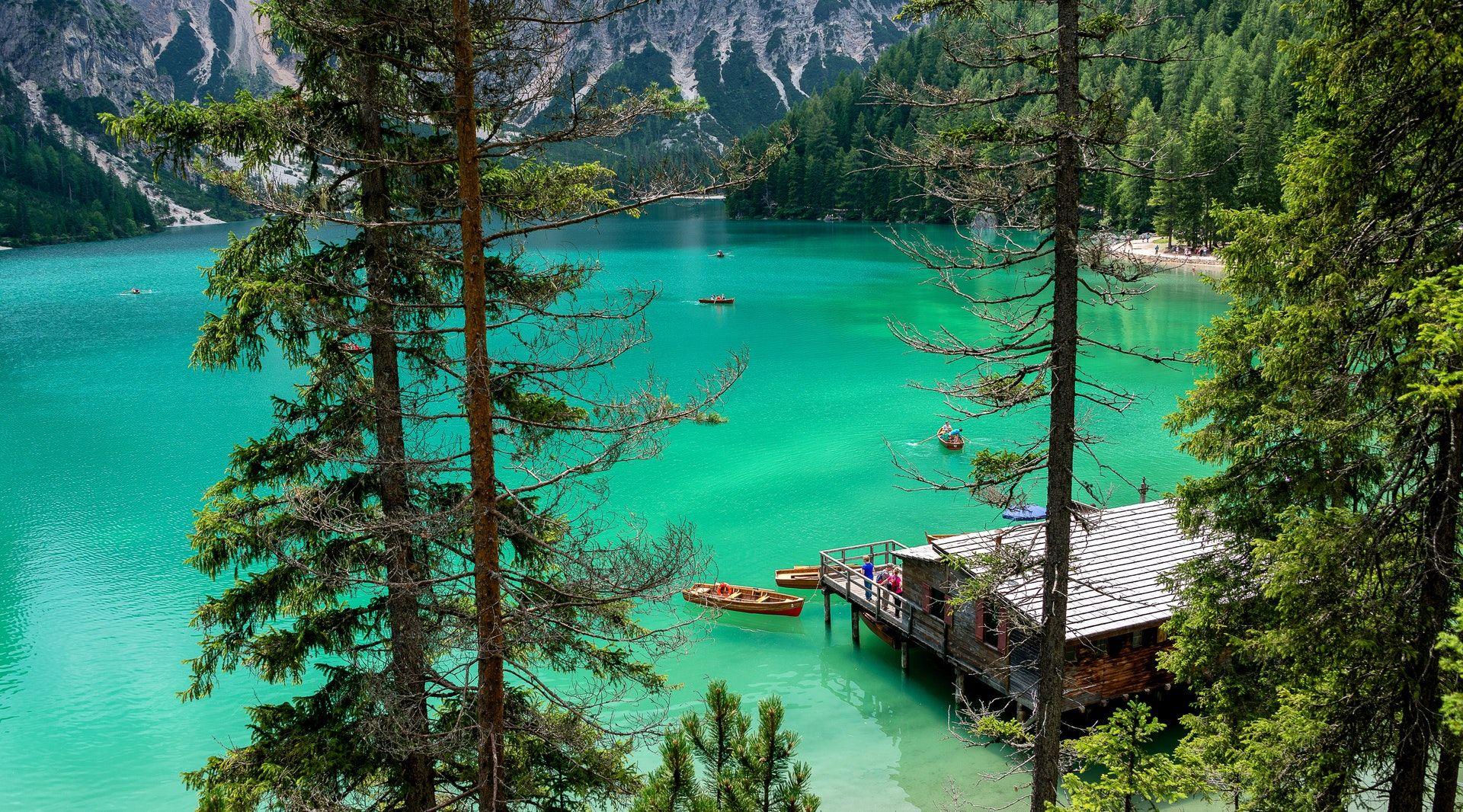 عکس زمینه اسکله چوبی در آب سبز پس زمینه