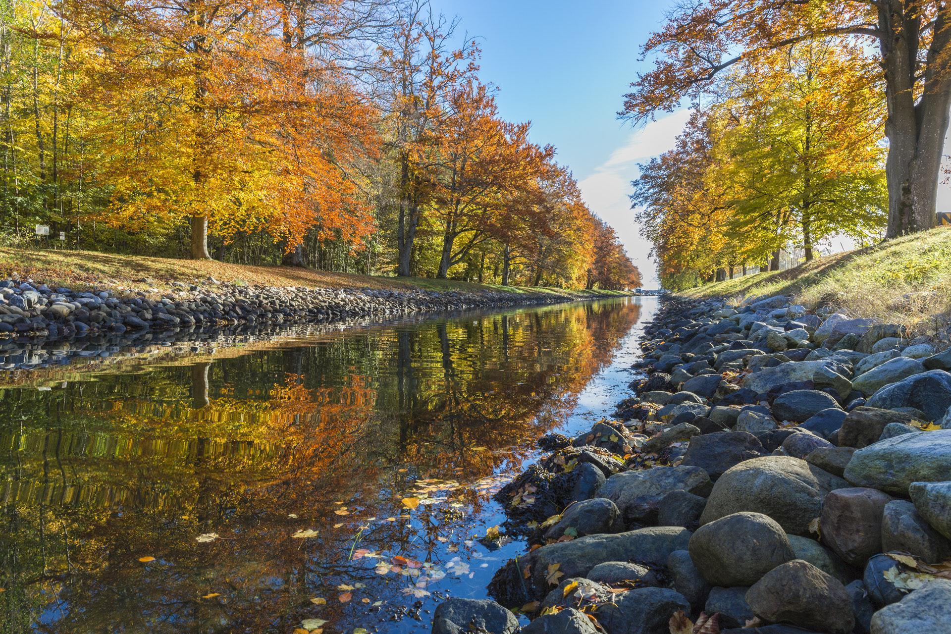 عکس زمینه رودخانه زلال میان جنگل پاییزی پس زمینه