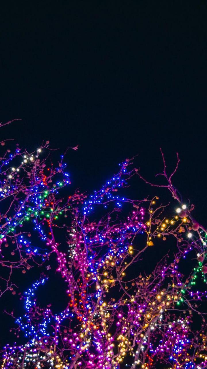 عکس زمینه درخت چراغانی شده در شب پس زمینه