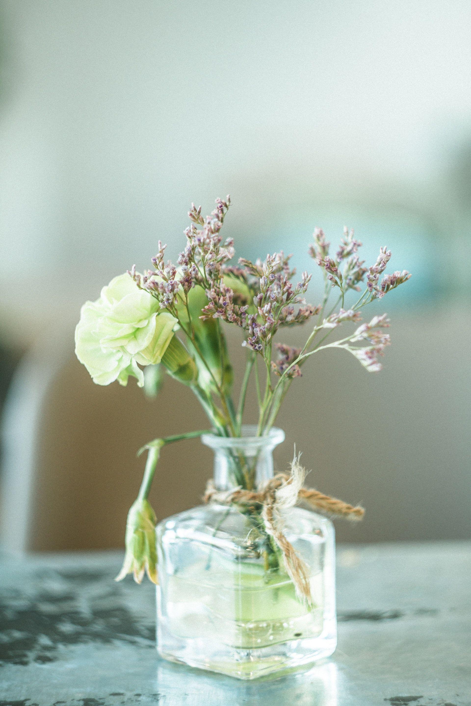 عکس زمینه گل سبز و بنفش در گلدان شیشه ای شفاف پس زمینه