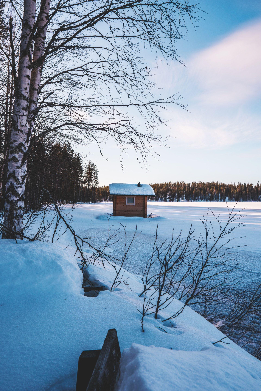 عکس زمینه منظره زیبا زمستانی و برفی سرد پس زمینه