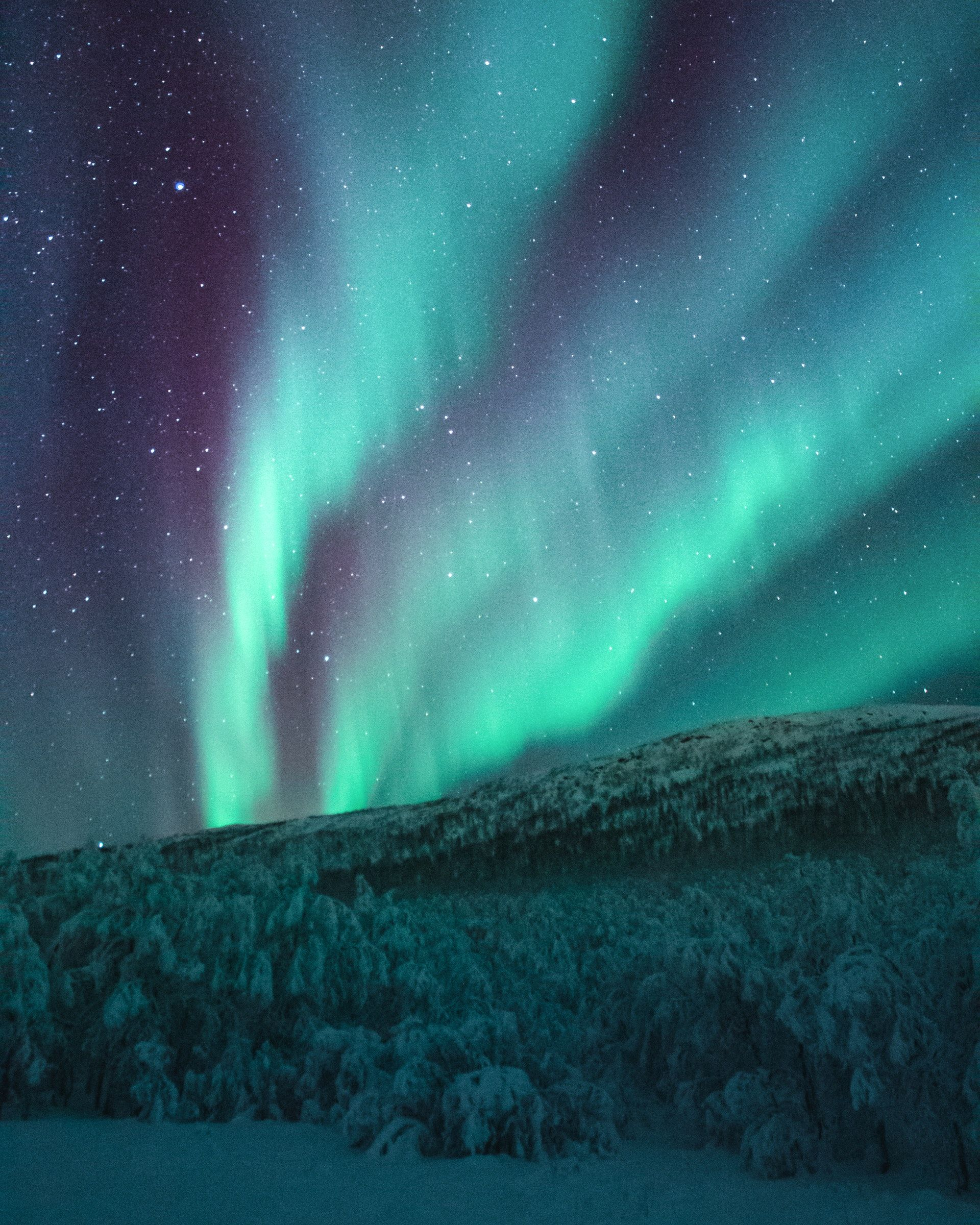 عکس زمینه نور شفق قطبی پس زمینه