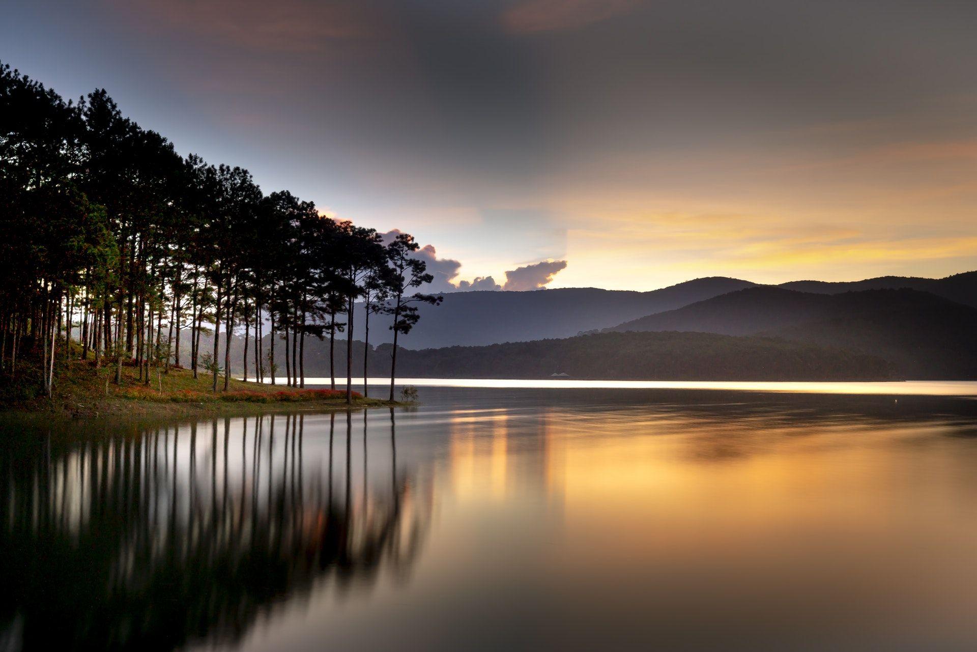عکس زمینه بازتاب درختان در آب پس زمینه