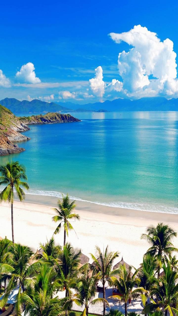 عکس زمینه ساحل دریا استوایی پس زمینه