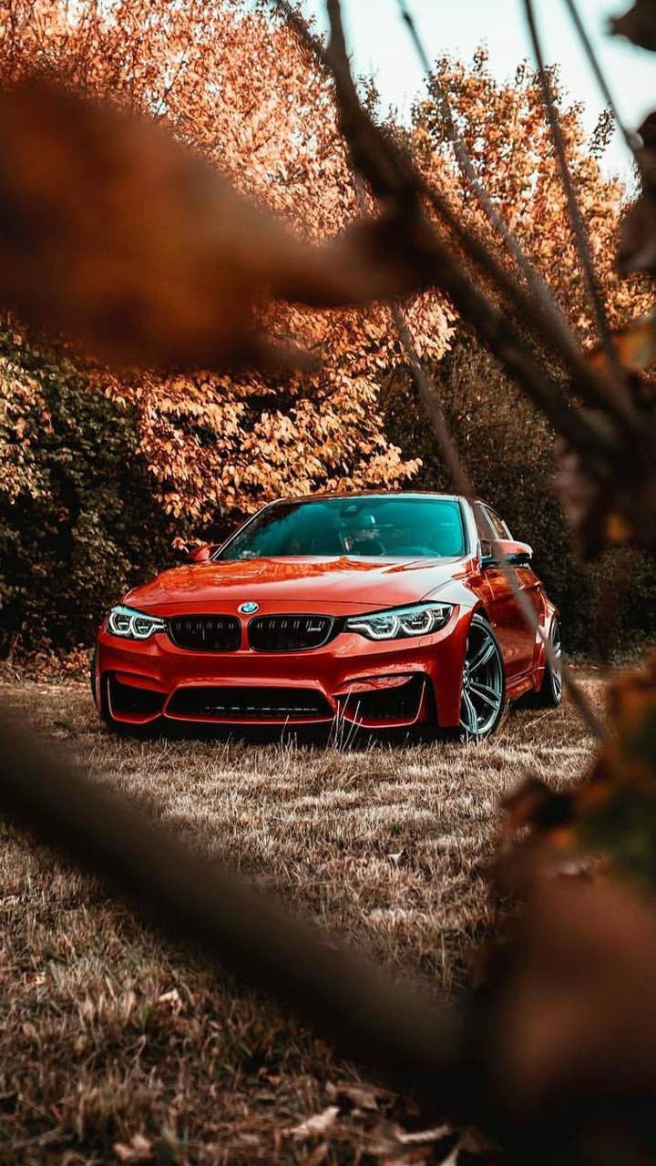 عکس زمینه BMW M3 نارنجی پاییزی پس زمینه