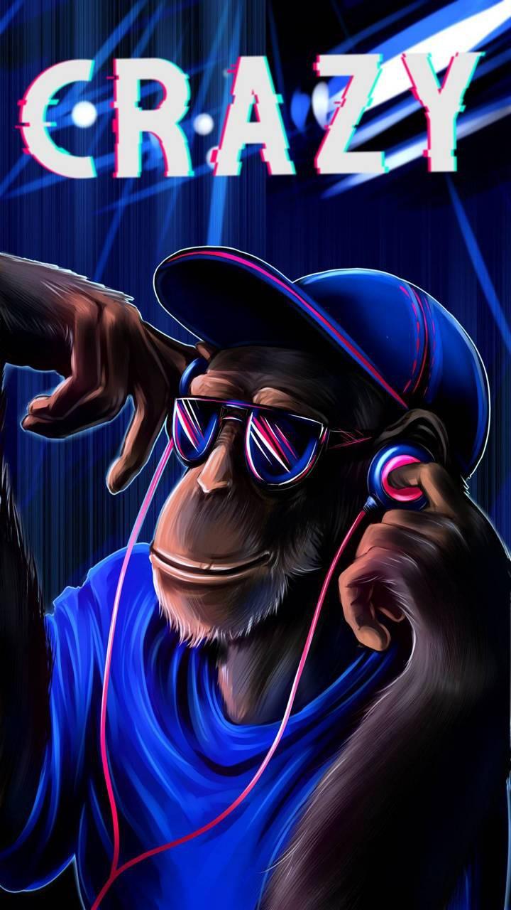 عکس زمینه میمون دیوانه پس زمینه
