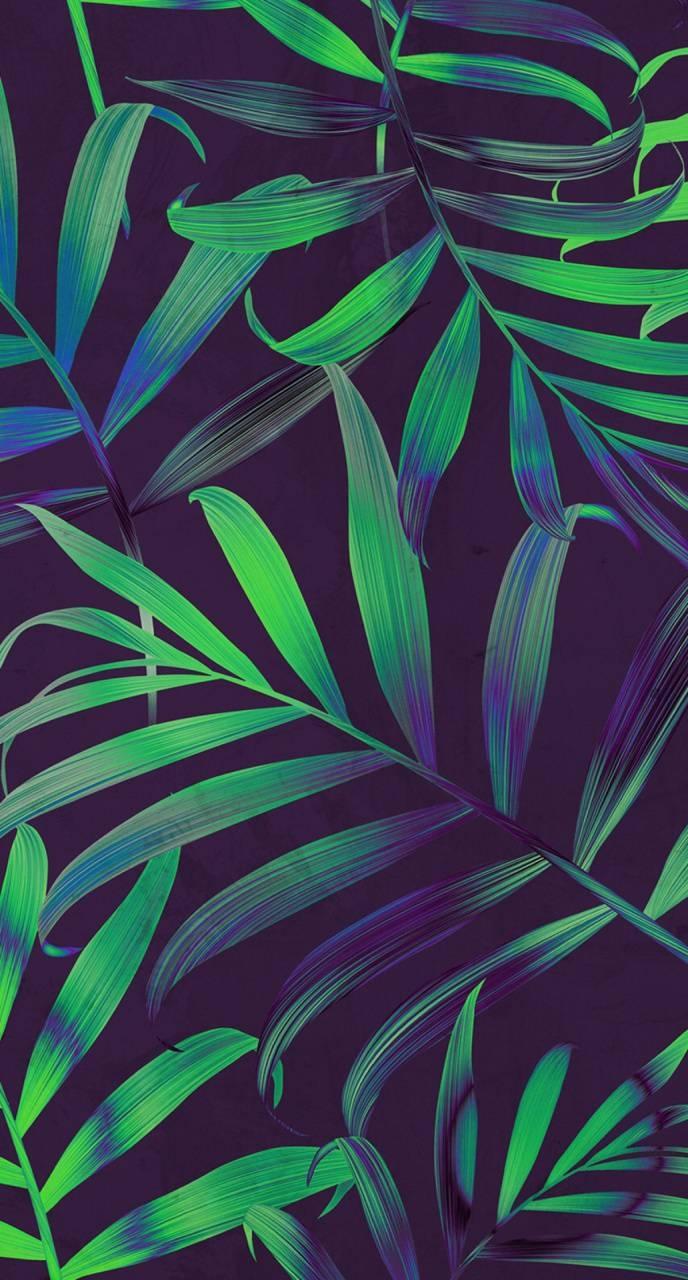 عکس زمینه برگ سبز و بنفش زیبا پس زمینه