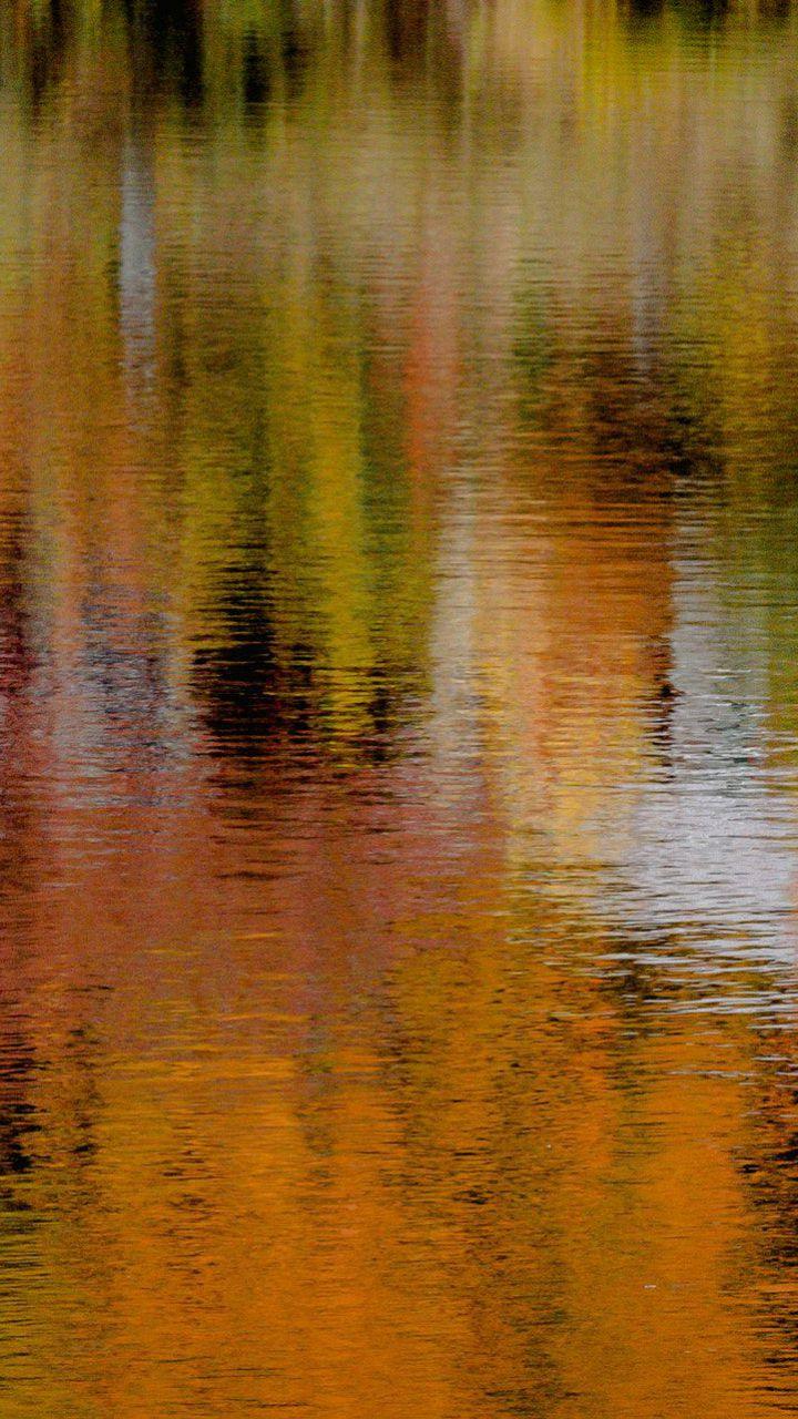 عکس زمینه نمای رنگ پاییزی درختان در آب پس زمینه