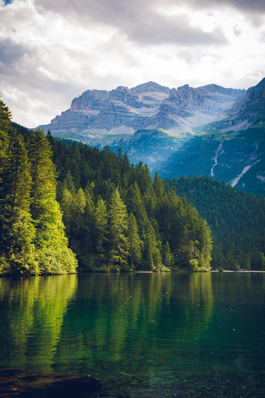 عکس زمینه منظره کوه و دریا و جنگل پس زمینه
