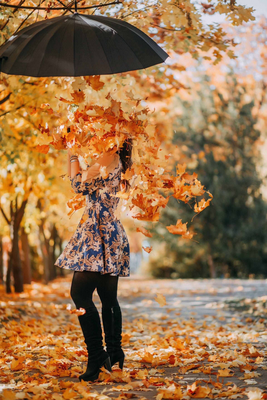 عکس زمینه دخترونه پاییزی زیبا با چتر پر از برگ های زرد پس زمینه