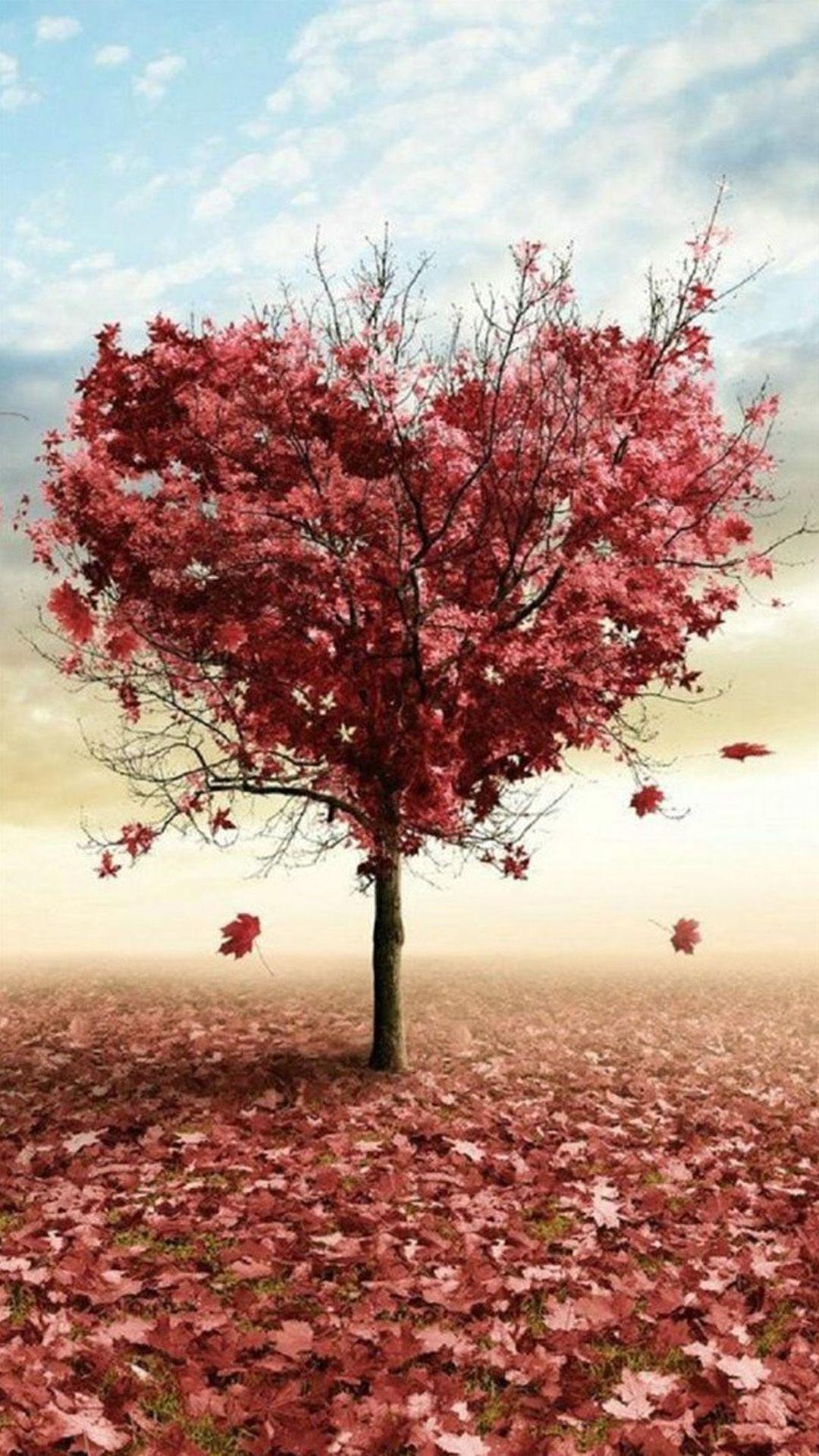 عکس زمینه درخت قلب پاییزی پس زمینه