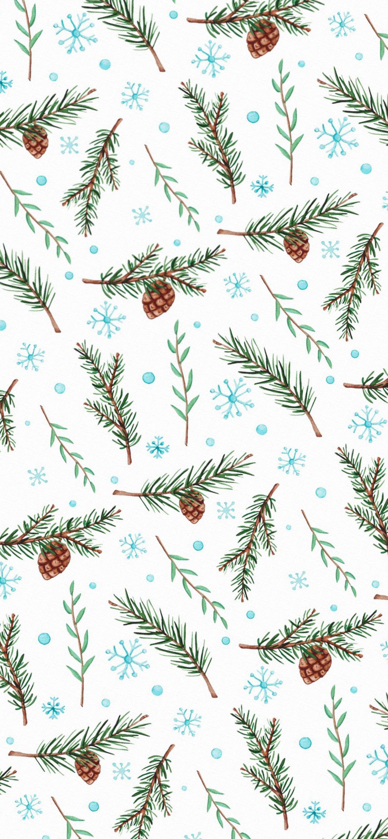 عکس زمینه بلوط و شاخه های کاج کریسمس پس زمینه