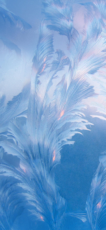 عکس زمینه اصلی شیائومی ردمی نوت 9 پرهای آبی پس زمینه