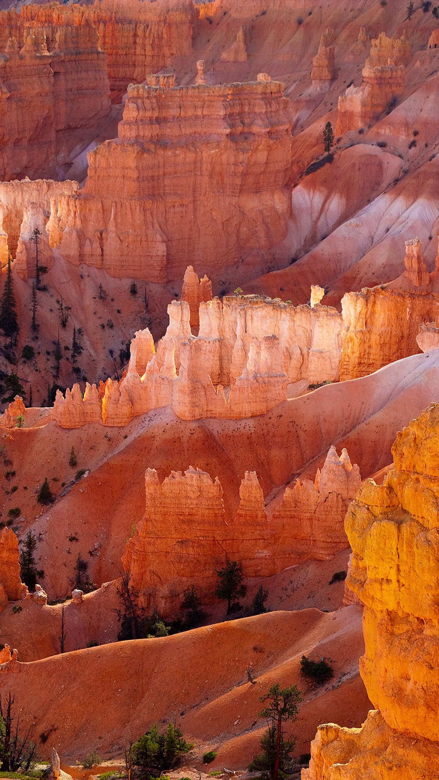 عکس زمینه پارک ملی بریس کانیون یوتا پس زمینه