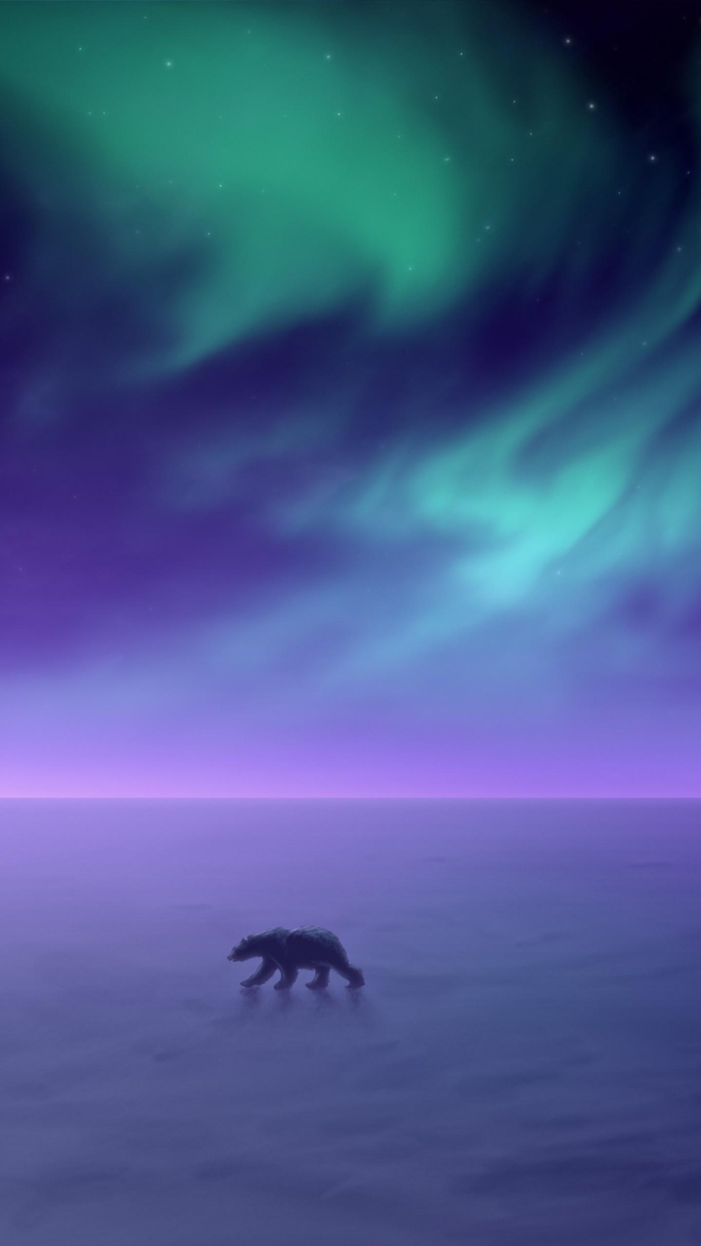 عکس زمینه شفق قطب شمال خرس قطبی پس زمینه