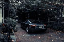 عکس زمینه آئودی پارک شده در نزدیکی درختان