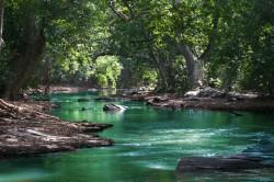 عکس زمینه رود بین درختانسبزجنگل
