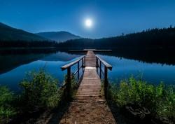 عکس زمینه پل چوبی قهوه ای