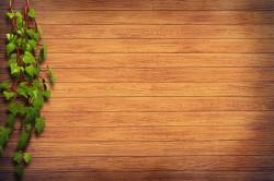 عکس زمینه سطح چوبی در کنار تصویر سبز کارخانه