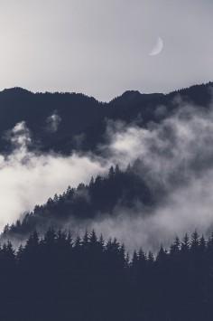 عکس زمینه کوه پوشش داده شده با مه