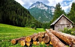 عکس زمینه کلبه و چمن و کوه و دشت