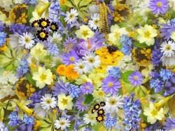 عکس زمینه پر از گل