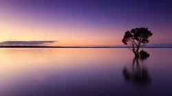عکس زمینه منظره زیبای دریا در برابر آسمان در غروب آفتاب