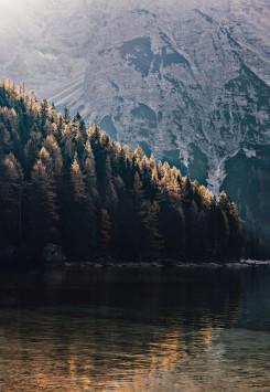 عکس زمینه دریاچه در نزدیکی جنگل و کوه