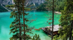 عکس زمینه اسکله چوبی در آب سبز