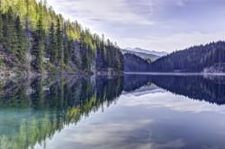 عکس زمینه درختان کاج سبز در کنار دریاچه