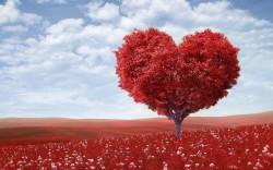عکس زمینه درخت قلب قرمز