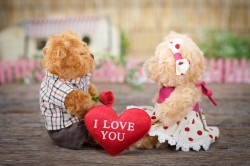 عکس زمینه خرس عروسکی ولنتاین