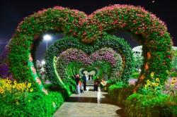 عکس زمینه باغ گل صورتی و بنفش به شکل قلب