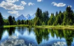 عکس زمینه دریاچه و درختان سبز و آسمان آبی