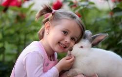 عکس زمینه خرگوش و دختر