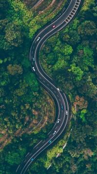 عکس زمینه جاده مارپیچ جنگلی