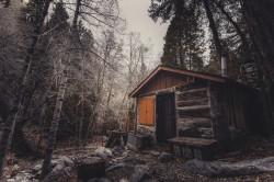 عکس زمینه کلبه چوبی قهوه ای