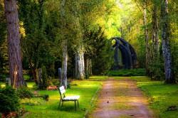 عکس زمینه قبرستان زیبا در میان درختان