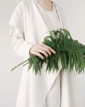 عکس زمینه برگ سبز در دست انسان