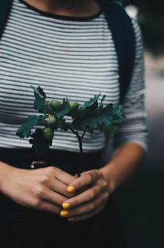 عکس زمینه گیاهی سبز در دست فرد