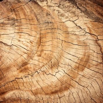 عکس زمینه چوب تنه درخت قدیمی قهوه ای