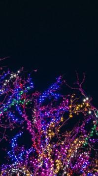 عکس زمینه درخت چراغانی شده در شب