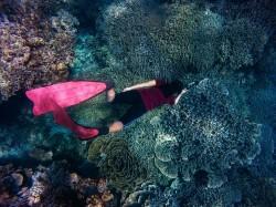 عکس زمینه غواصی زیر اقیانوس
