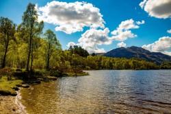 عکس زمینه آب احاطه شده توسط درختان و ابر HDR