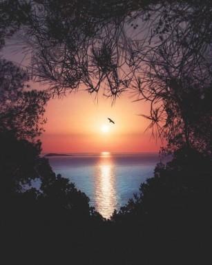 عکس زمینه قلب فانتزی در طبیعت و دریا